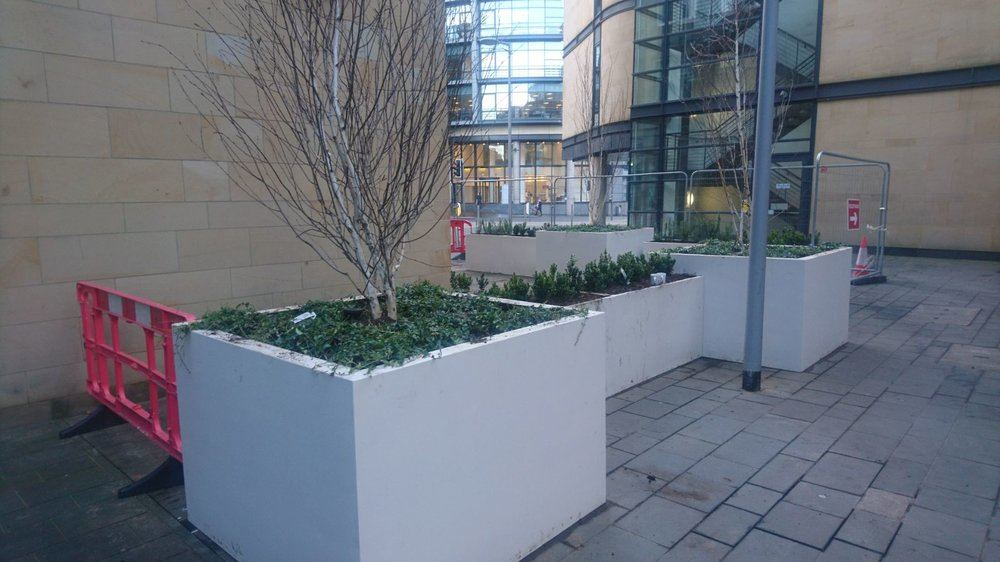 Commercial Landscaping, GM Land Solutions